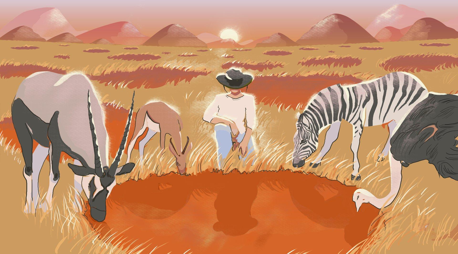 Экспедиция к загадочным кругам фей в пустыне Намиб - 1