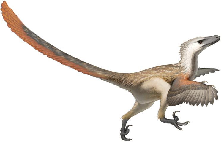 Мир Юрского периода: а можем ли мы на самом деле воскресить динозавров? - 2