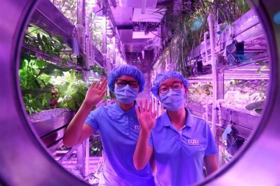 Китайский «Лунный дворец» установил новый рекорд - 1