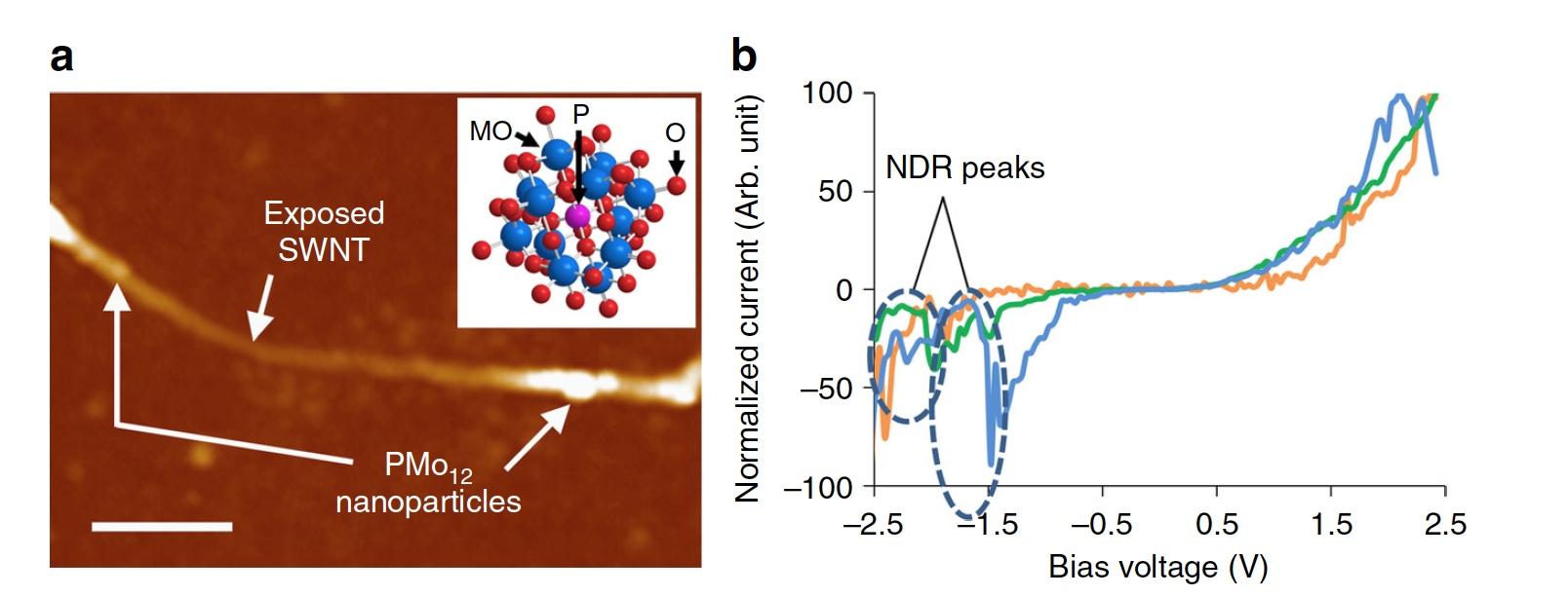 Рецепт искусственного мозга: нанотрубки, полиоксометаллат и щепотка электронов - 5