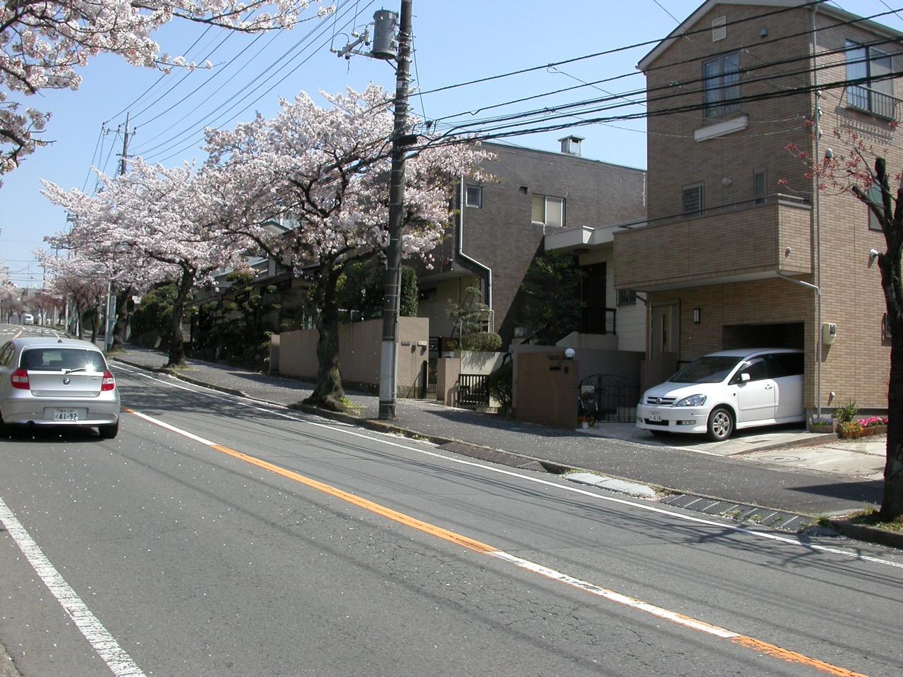 От разговорника вместо физики до CarPrice, или как я обосновался в Японии - 1