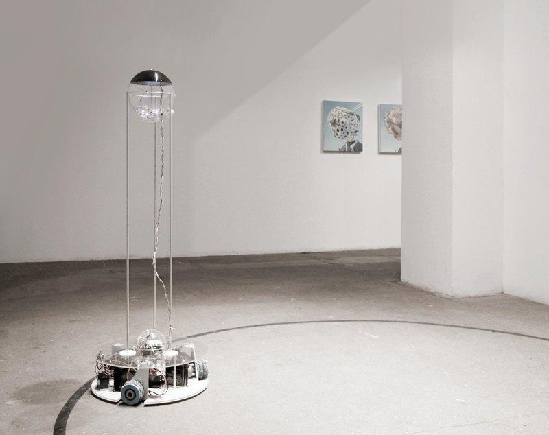 Дэвид Боуэн: художник, который рисует… мухами