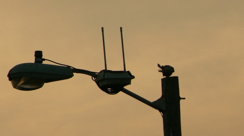 «Расширение границ»: диапазон 6 ГГц отдадут под нужды Wi-Fi - 1