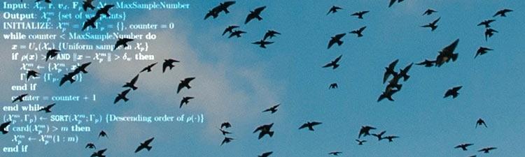 Инженеры учат беспилотники автоматически уводить стаи птиц от аэропортов