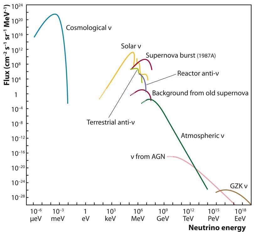 Сверхновые нейтрино. Как они рождаются, как мы их ждем, и почему это интересно - 12