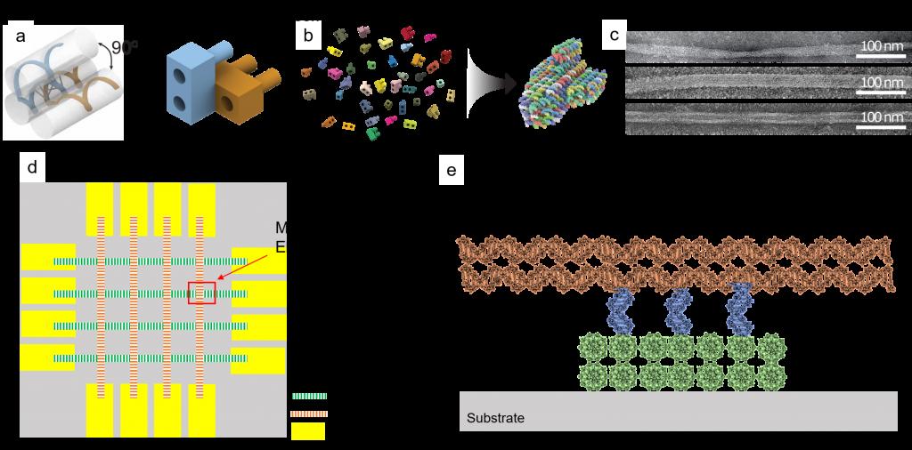 ПЗУ на основе ДНК, память на нуклеиновой кислоте и подложки для OxRAM - 2