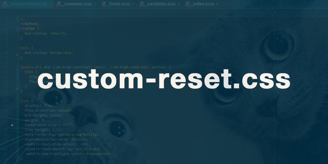 Кастомный подход для нормализации и сброса стилей (custom-reset.css) - 1