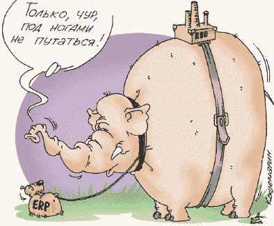 Внедрение ERP: как не потерпеть фиаско - 2