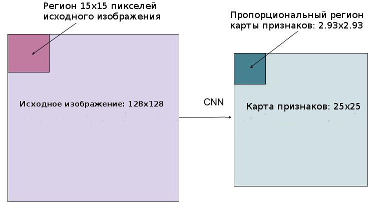 Mask R-CNN: архитектура современной нейронной сети для сегментации объектов на изображениях - 24
