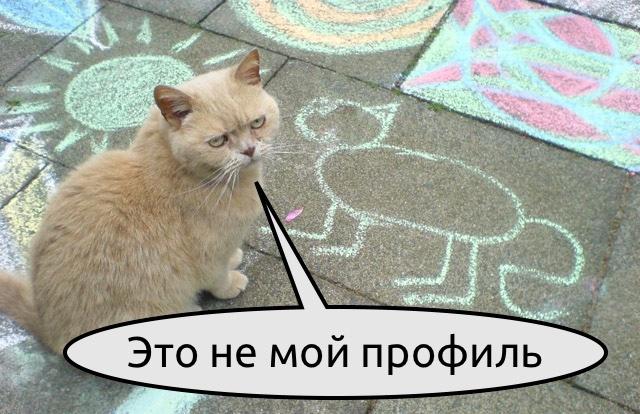 Зачем айтишнику «знать, чем живут другие»? - 1