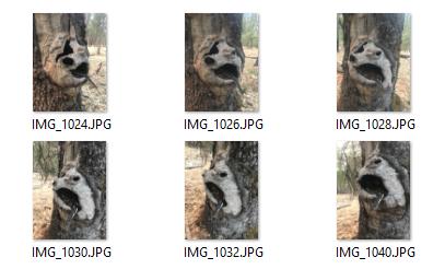 AliceVision: фотограмметрия из командной строки - 2