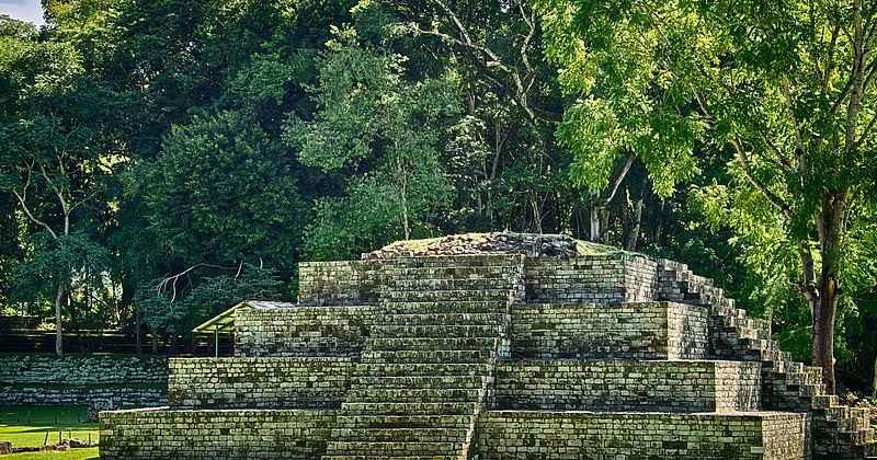 Древние майя захватывали диких животных для жертвоприношений