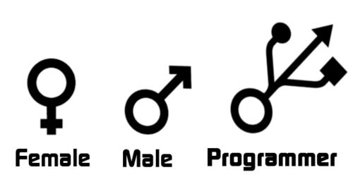 С Днём Программиста! Любите своих разработчиков - 1