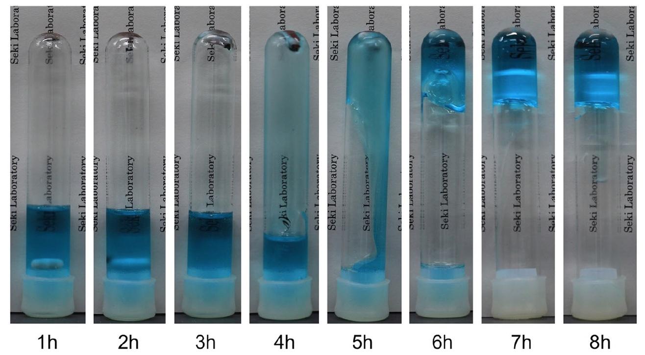 Кто сказал, что Флаббер не настоящий: создание гомогенного термореактивного полимерного геля - 7