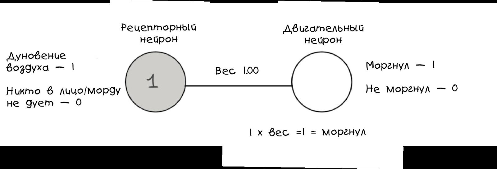 Создаём простую нейросеть - 12
