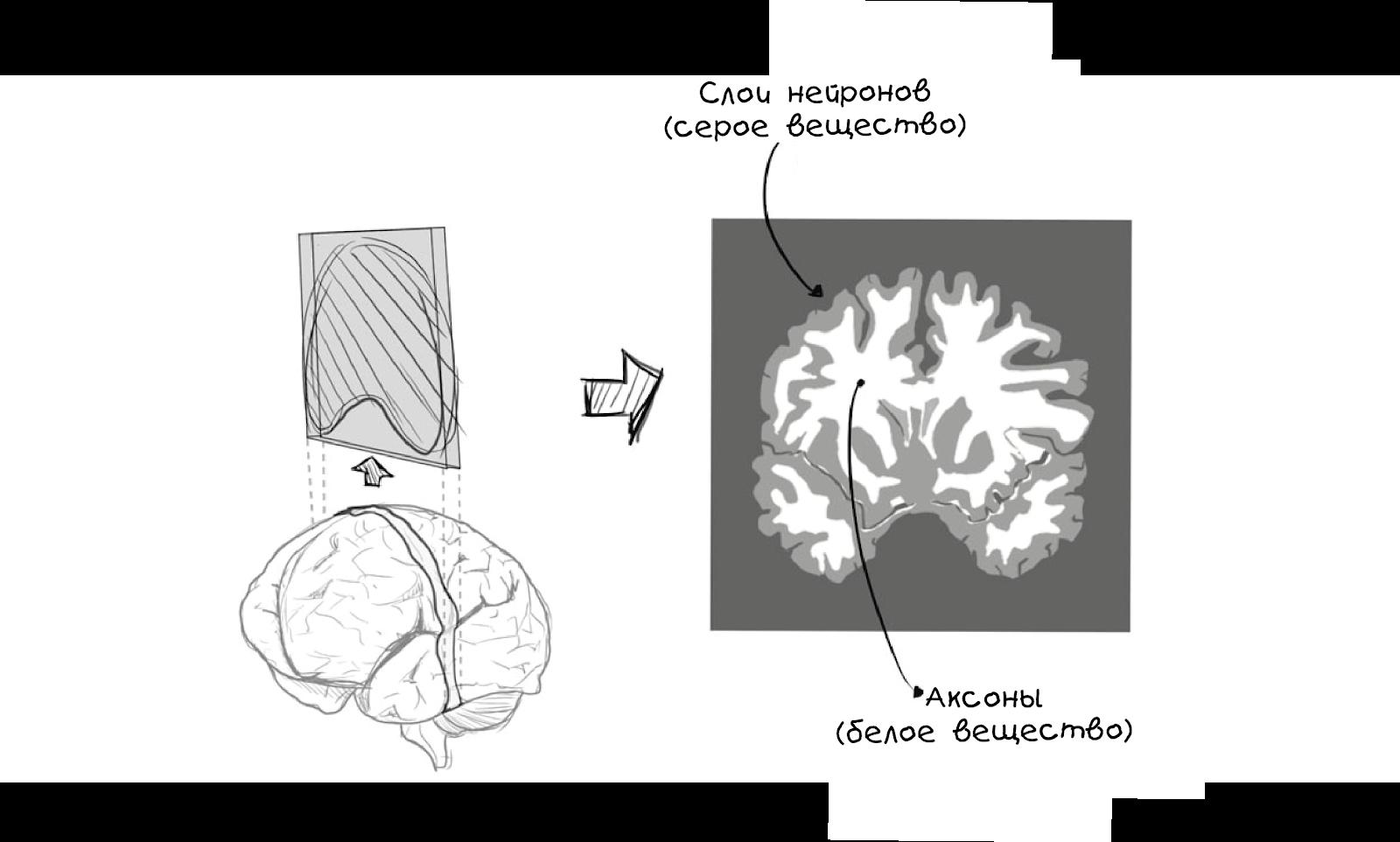 Создаём простую нейросеть - 5