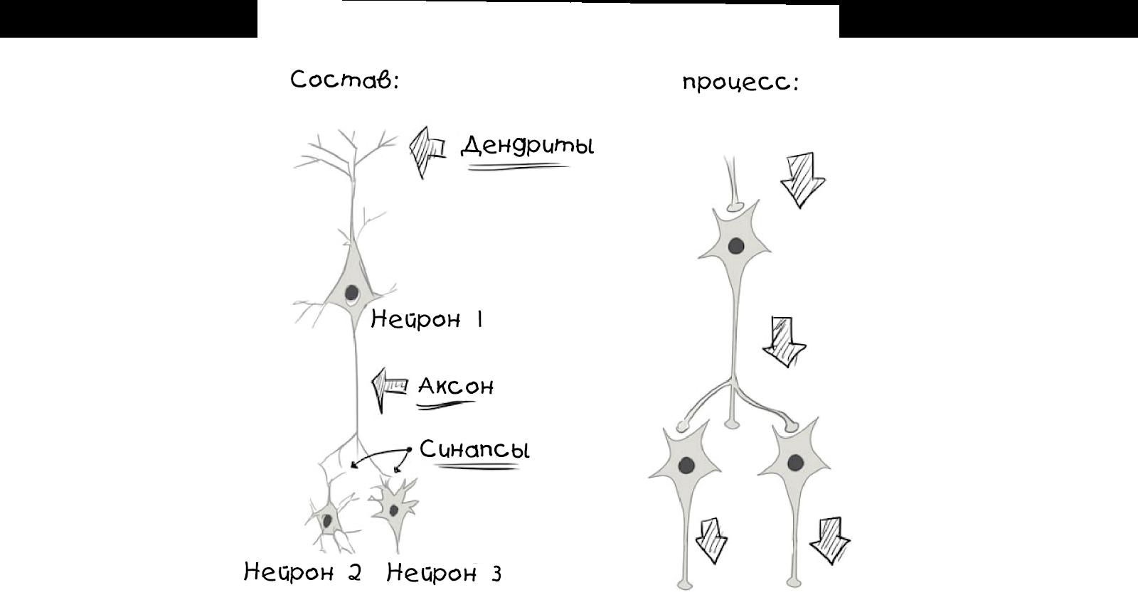 Создаём простую нейросеть - 6