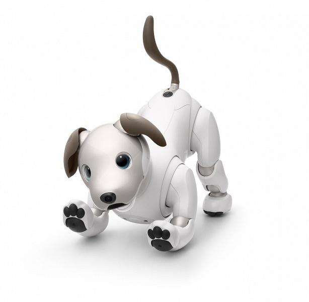 Новый робот-собака Sony Aibo вышел за пределы Японии