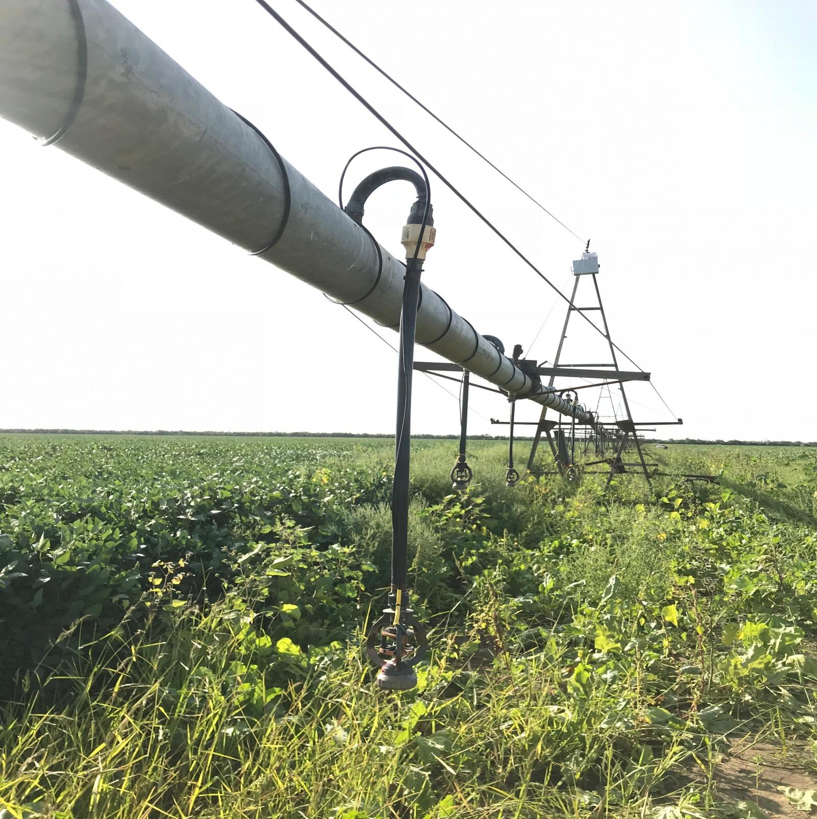 Внедрение LoRaWAN на сельскохозяйственном предприятии. Все о стройке, запуске и решениях - 4