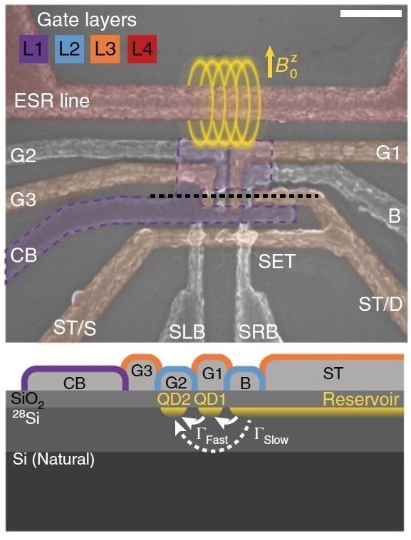 Квантовый процессор на базе спинового резонанса и манипуляций с синглетной-триплетной системой - 2