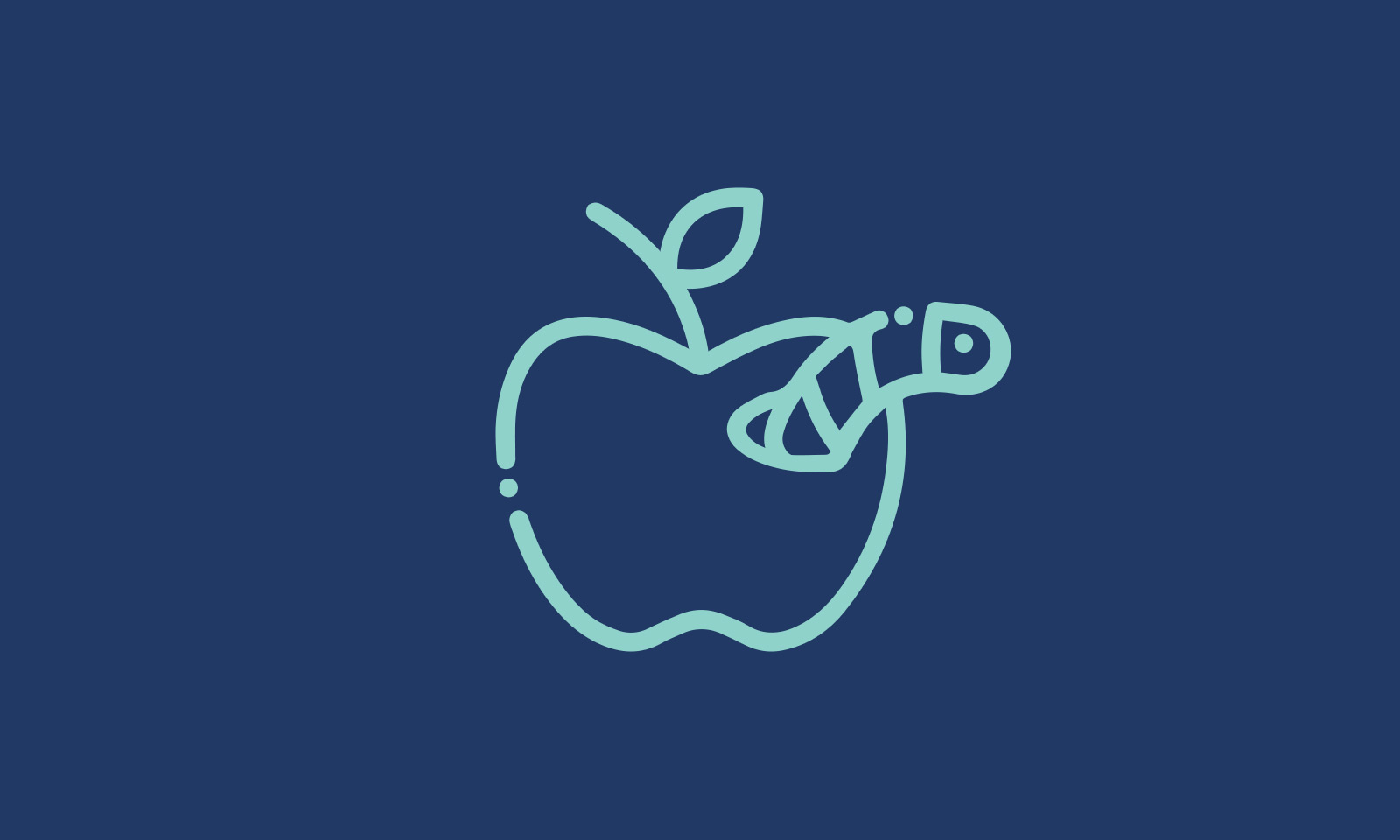 iOS runtime mobile exploration with Objection, или Хакаем собственное приложение - 1