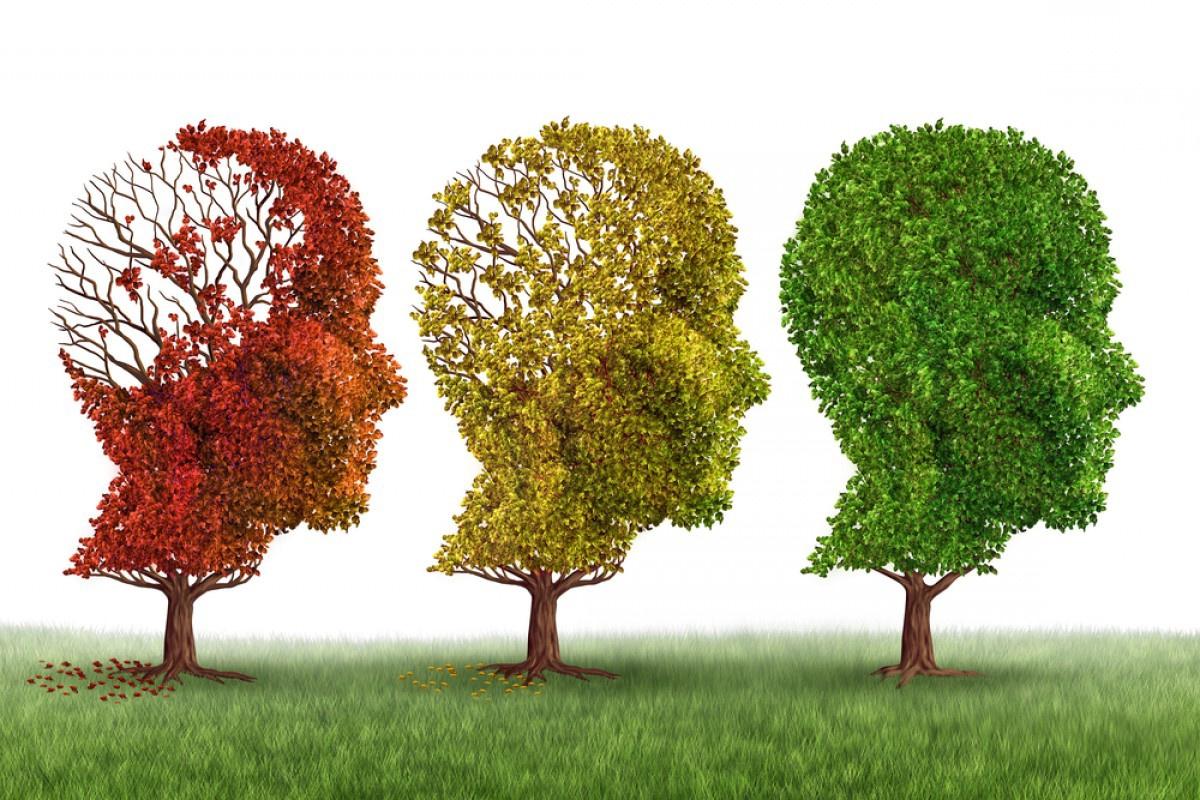 Клинические испытания показали уменьшение прогрессии болезни Альцгеймера более чем наполовину - 1