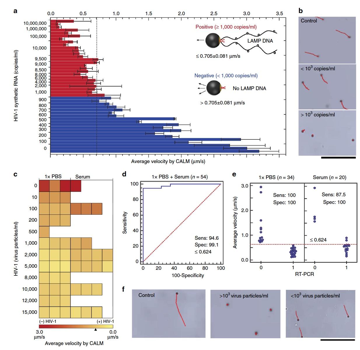 Анализ скорости молекулярных микромоторов для диагностики ВИЧ - 15