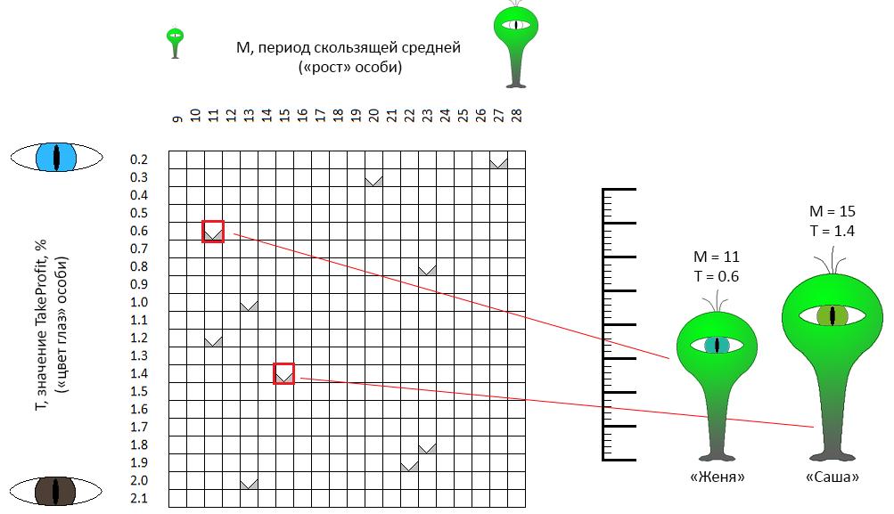 Оптимизируем торгового робота: генетический алгоритм - 2
