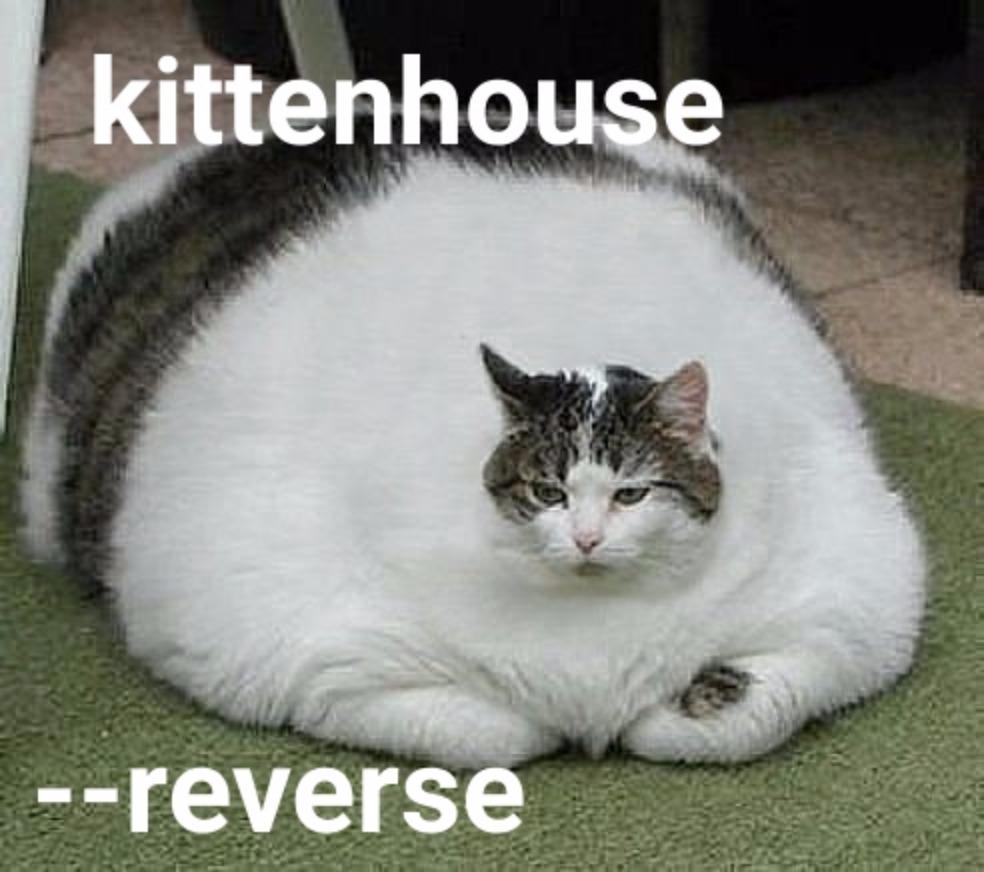 Использование ClickHouse в VK, или Зачем мы написали KittenHouse - 5