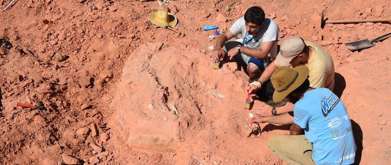 Обнаружены древнейшие длинношеие динозавры