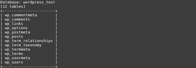 Kali Linux для начинающих - 13