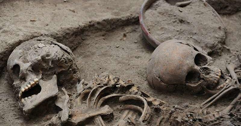 Древние европейцы вымерли от чумы