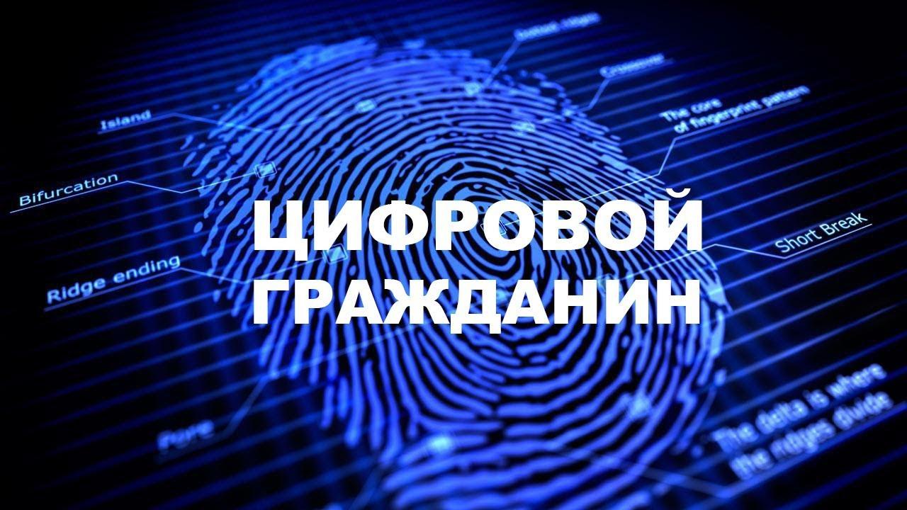 Прототип платформы цифрового профиля гражданина запустят в РФ до конца 2019 года - 1