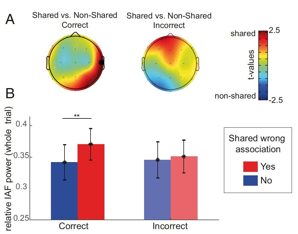 Откуда берется креативность: анализ активности альфа-волн мозга во время RAT-тестов - 8