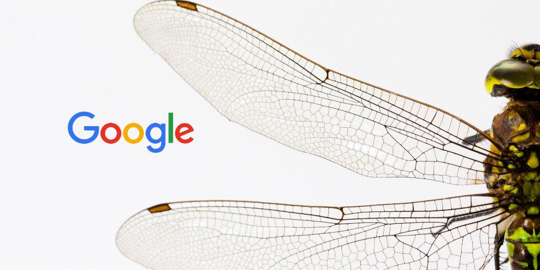 Google закрыл проект китайского поисковика с цензурой из-за разногласий внутри компании - 1