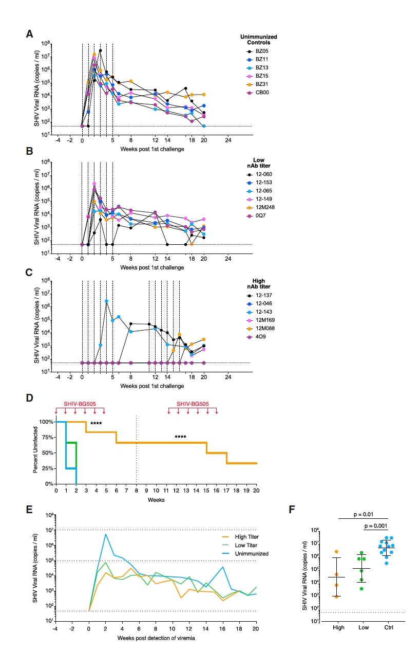 На шаг ближе к вакцине от ВИЧ: исследование титров сывороточных нейтрализующих антител у обезьян - 5
