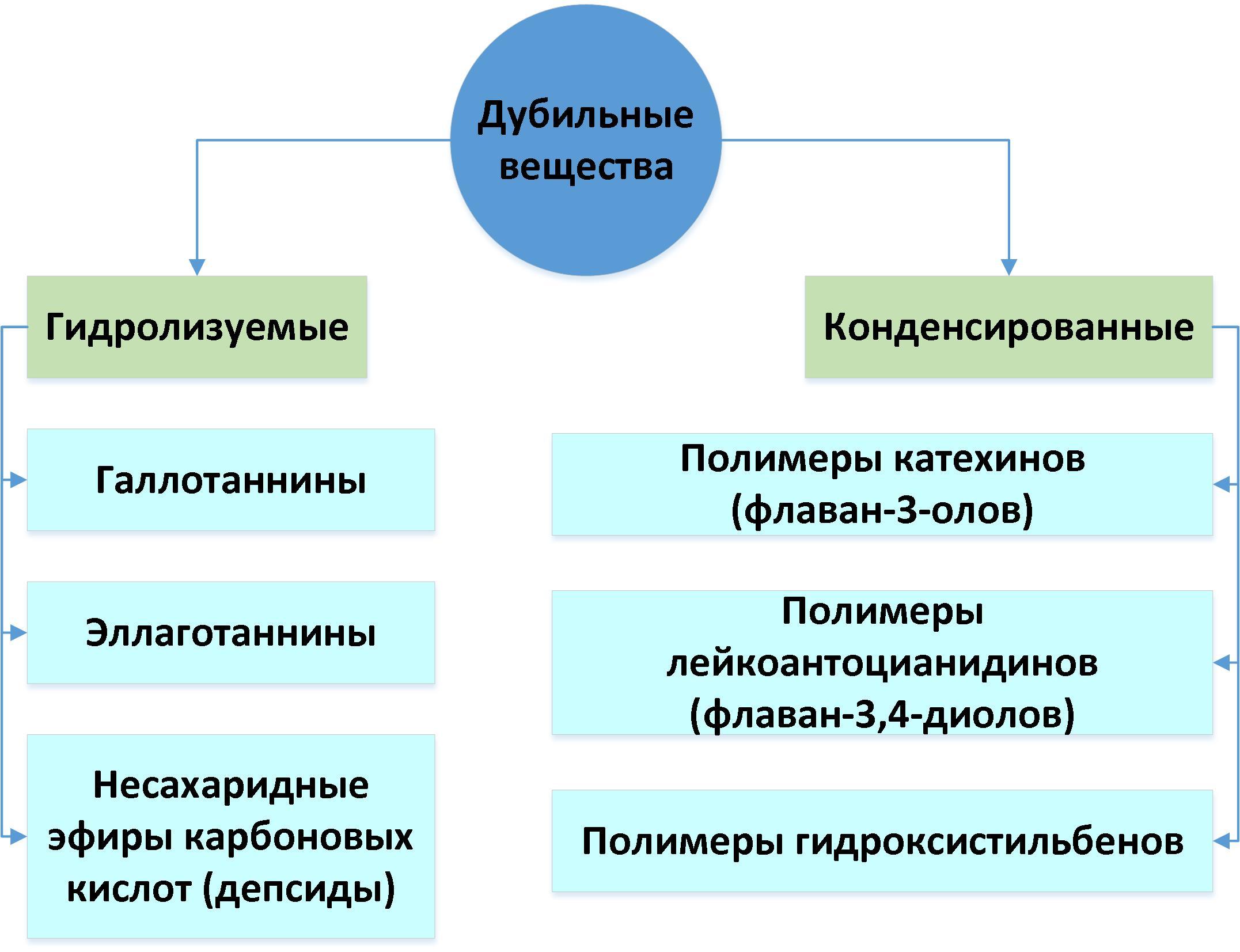 Хурма. Инструкция по употреблению - 8