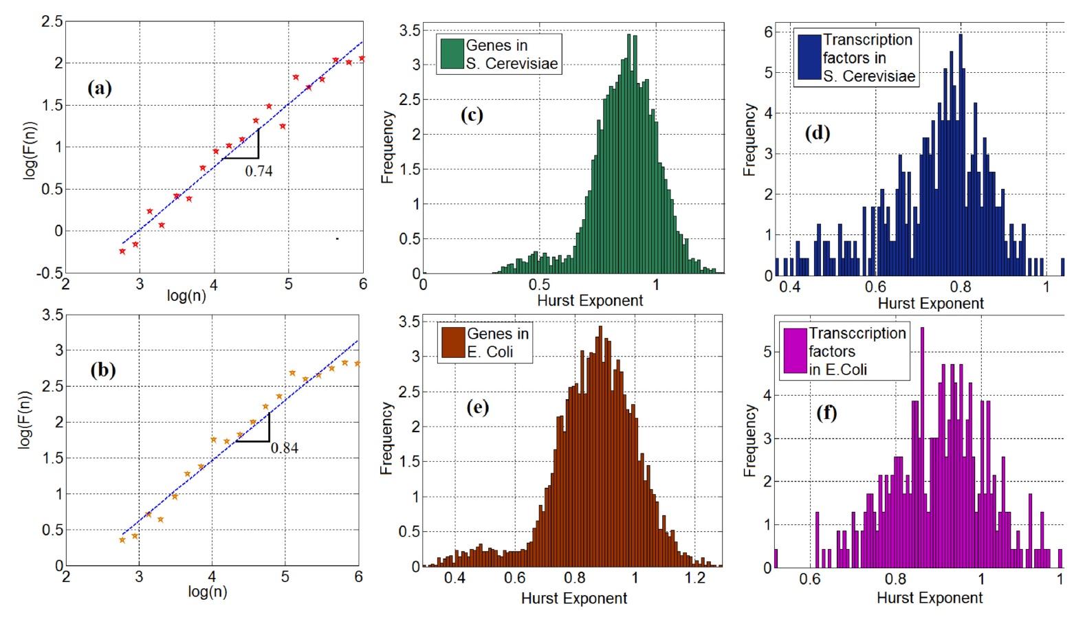 Генетика сорта Романеско: фрактальная математическая модель экспрессии генов - 5