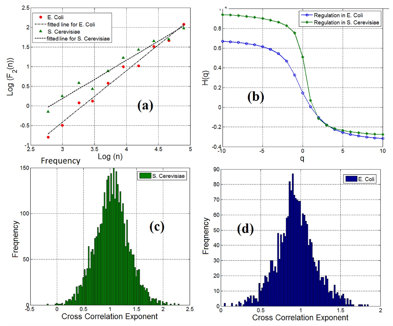 Генетика сорта Романеско: фрактальная математическая модель экспрессии генов - 6