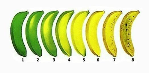 Заметки фитохимика. Зеленый банан или не забудь покормить микробиоту - 1