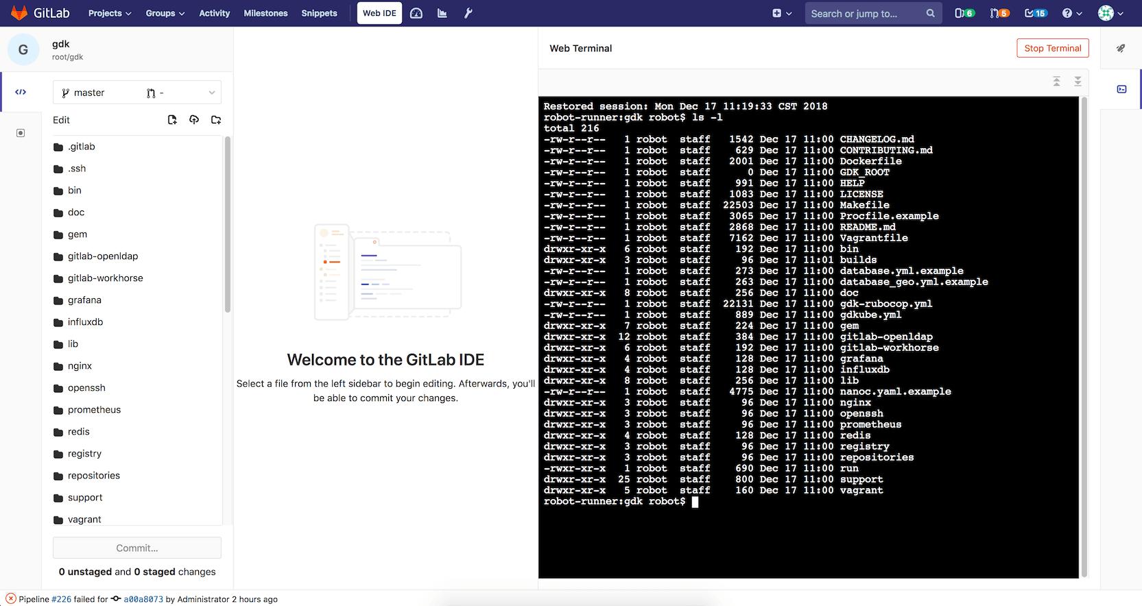 Web Terminal for Web IDE (beta)