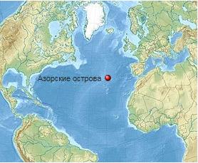 Азоры: последний резерв флоры в середине Атлантического океана - 2