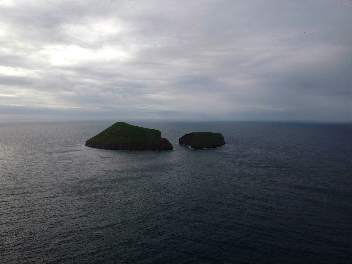 Азоры: последний резерв флоры в середине Атлантического океана - 3