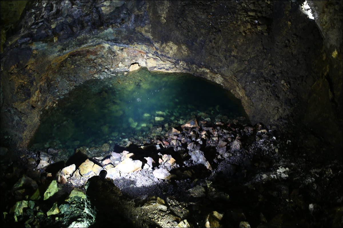 Азоры: последний резерв флоры в середине Атлантического океана - 44