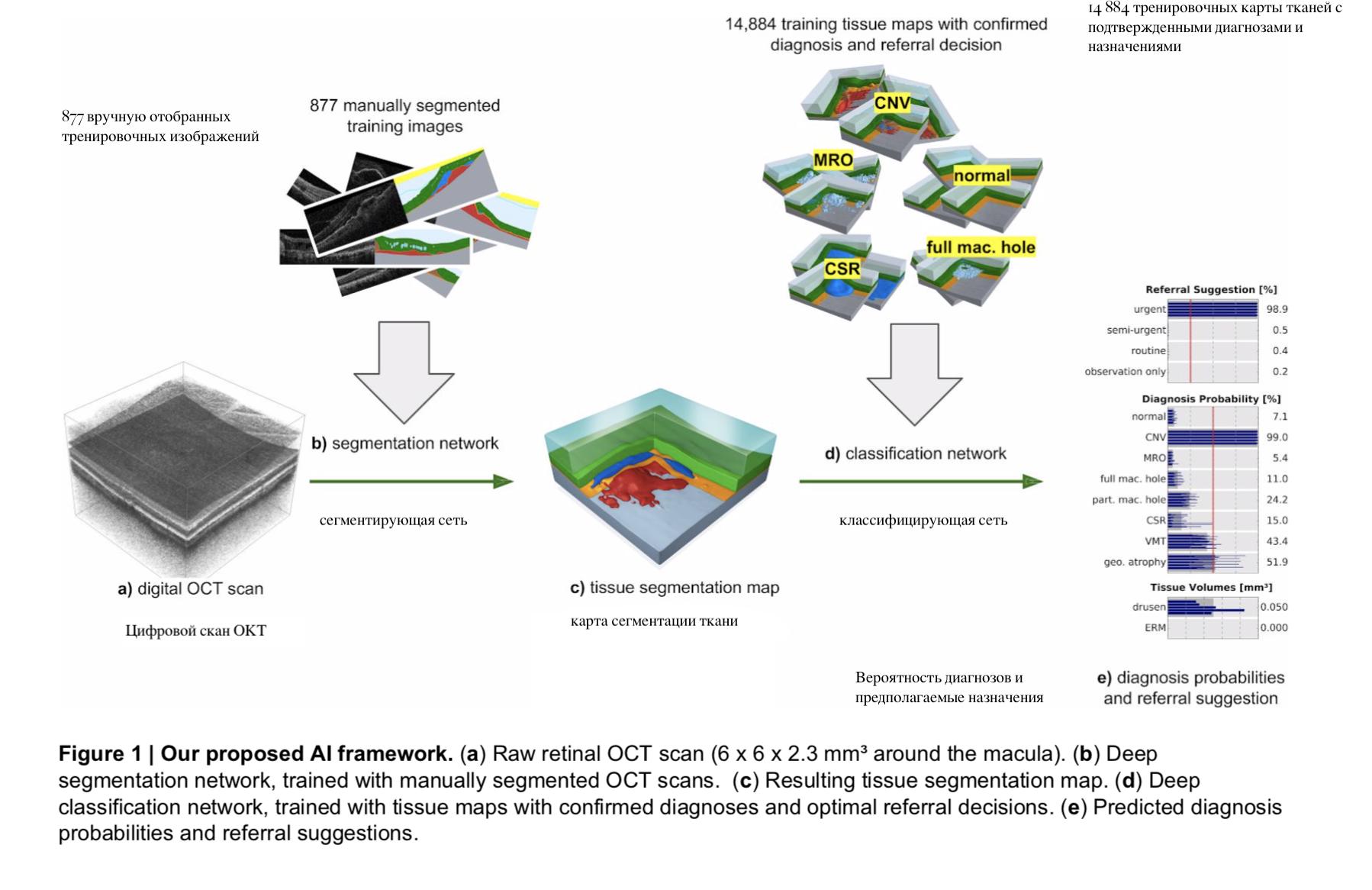 Больница Массачусетса и DeepMind независимо друг от друга приоткрыли «черный ящик» ИИ в медицине - 2