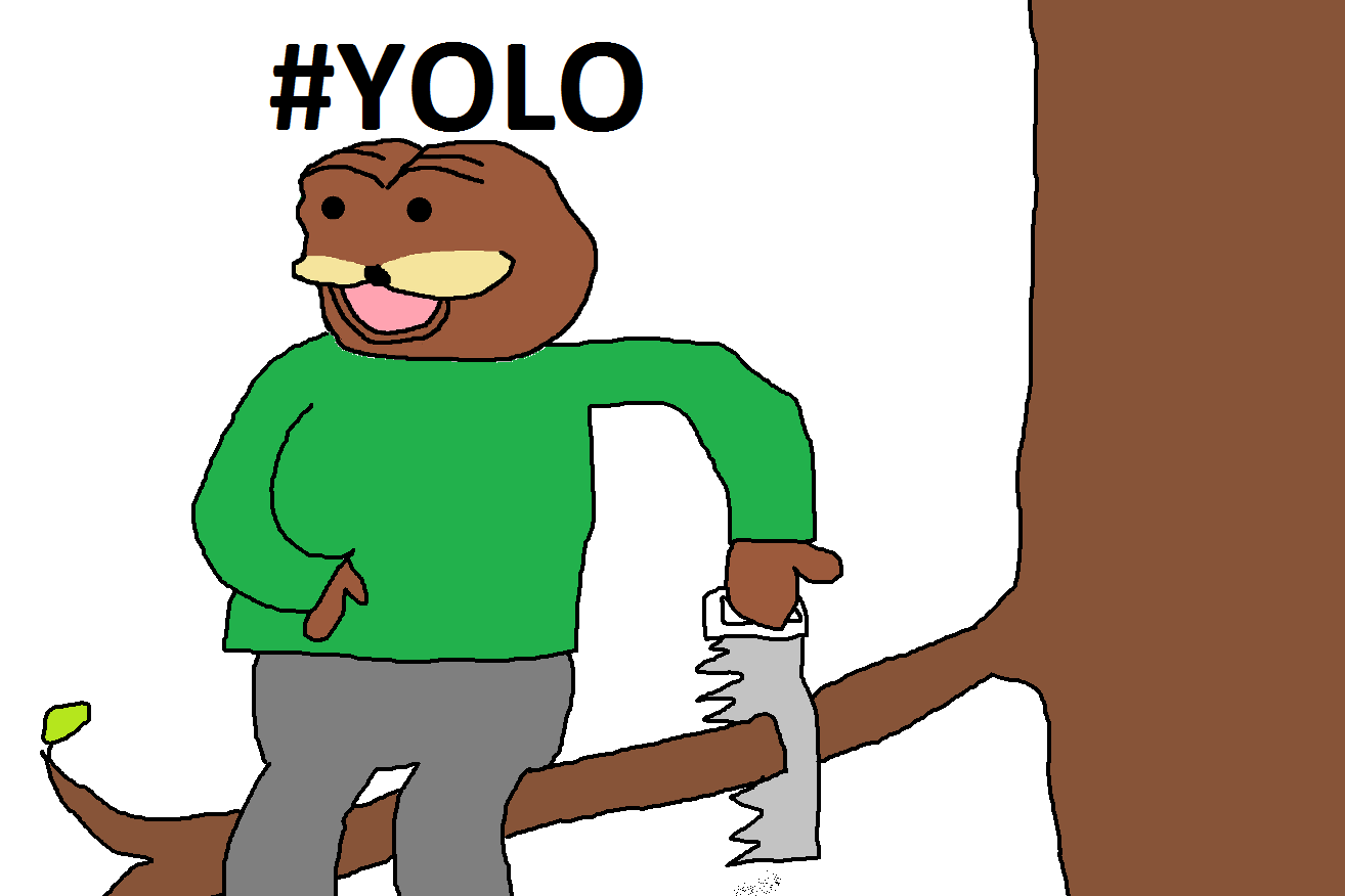 Because #YOLO