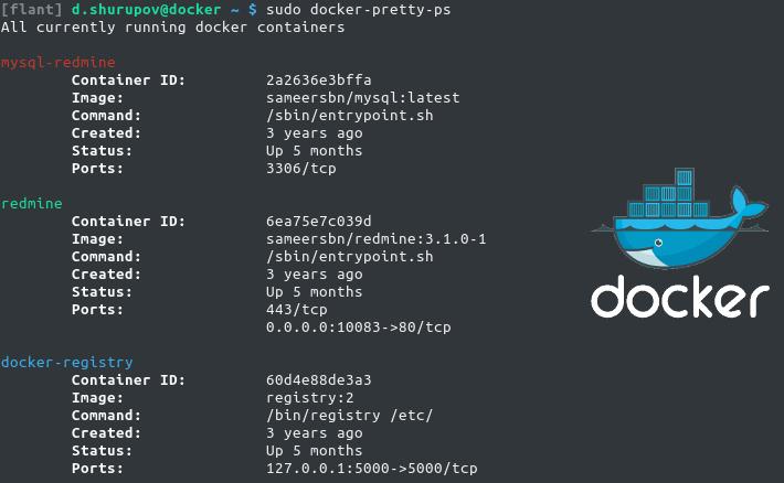 docker-pretty-ps — наконец-то удобный для чтения «docker ps» - 1