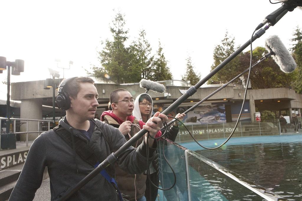 Зоопарк профессий, связанных с аудиоиндустрией - 2