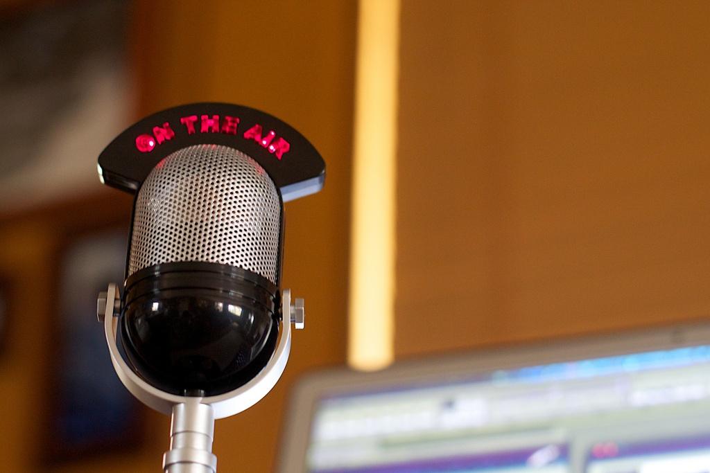 Зоопарк профессий, связанных с аудиоиндустрией - 4