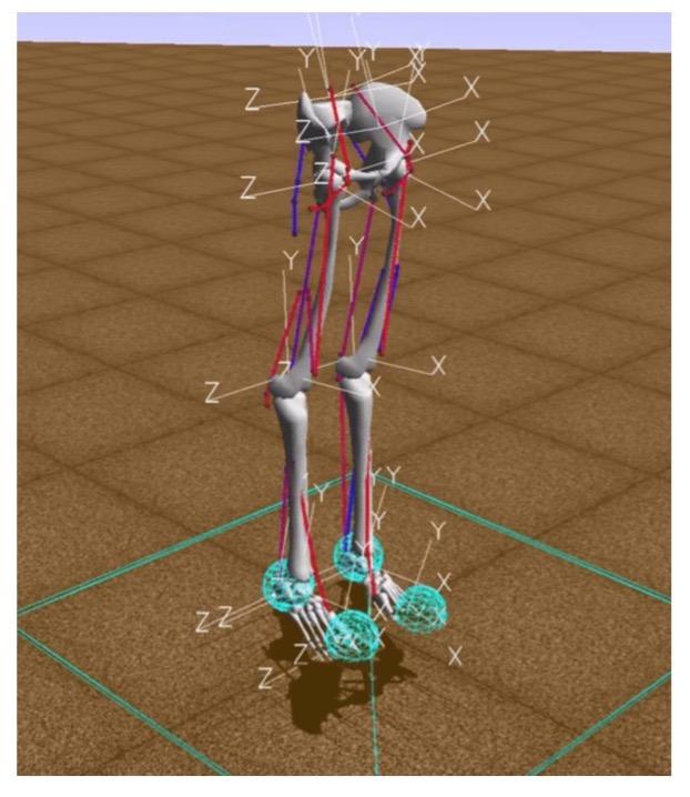 Как я научила робота бегать по видео с YouTube - 3